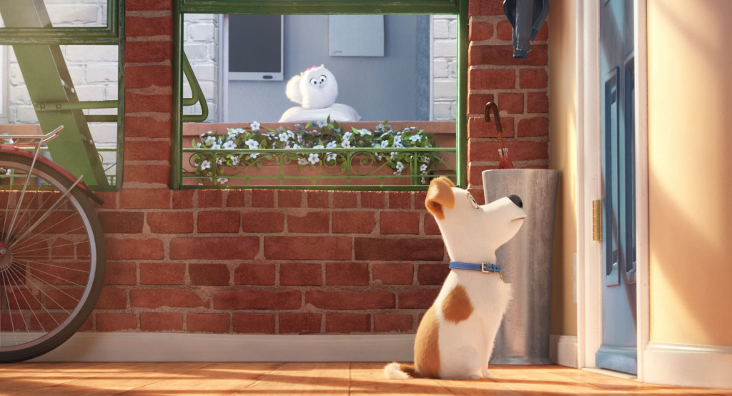 CineOrna | Pets